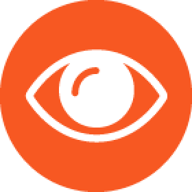 Vision Loss Services